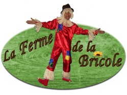 Logo bricole 2018