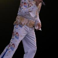 Elvis chanté en direct par Alan Scott